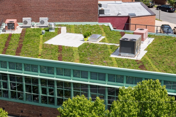 Benefits Of Adding A Roof Garden To Your Home
