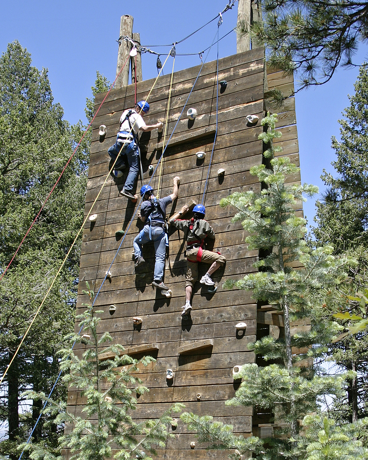 Workers climbing the wall as part of a team building exercise